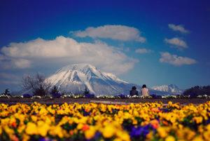 Tottori Japan